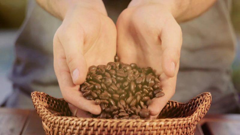 Tentera Coffee: Pour Over